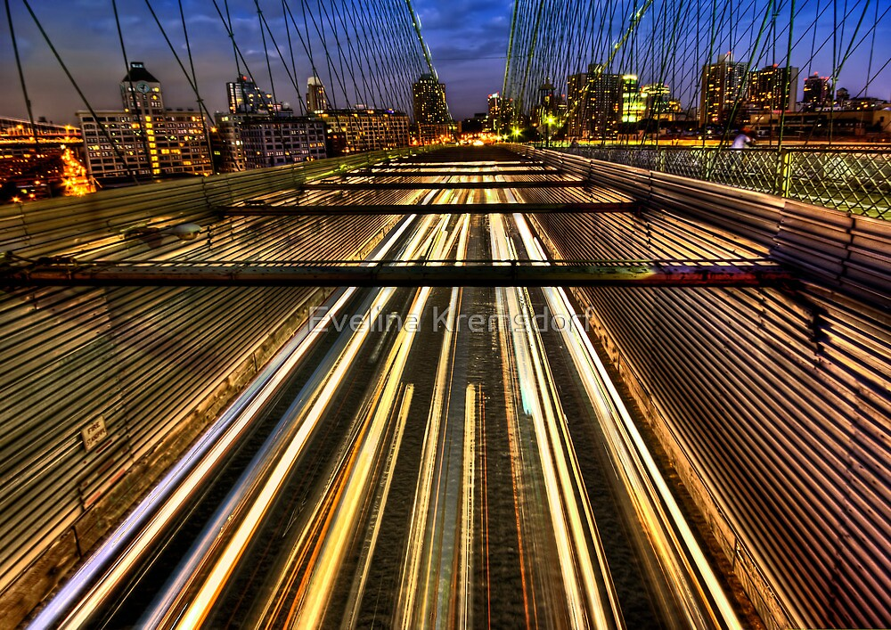 Life In The Fast Lane by Evelina Kremsdorf
