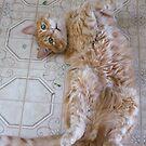Oh Man! I LOVE Catnip!! by Tracy Wazny