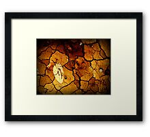 Paleobotany Framed Print