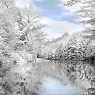 Winter at the Reservoir by Lori Deiter