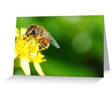 Hmmm... Nectar Greeting Card