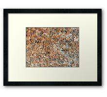Beetles Buffet Framed Print