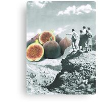 Fig dreams  Canvas Print