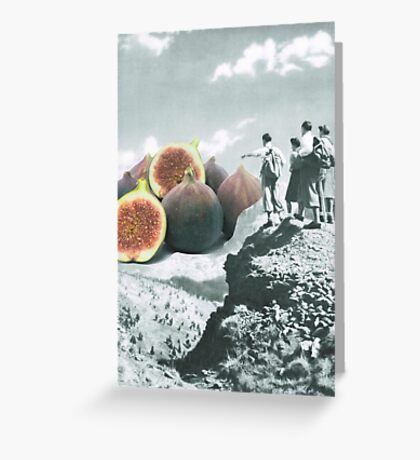 Fig dreams  Greeting Card