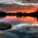 Burning Calm by Bob Larson