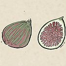figs by Richard Morden