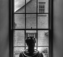 'Bust'ed Window by vilaro Images