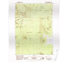 USGS Topo Map Oregon Pumice Desert West 281187 1985 24000 Poster