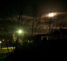 Yack at night !! by Tamarama72