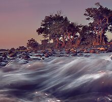 Flow Of Water, Rocks And Trees by Komang