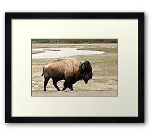 Wild West Framed Print