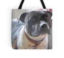 Headshot of a Staffordshire Bull Terrier Tote Bag