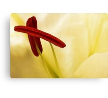 Lily With The X Factor Canvas Print