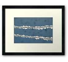 Ice on the wire Framed Print