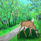 Deer by the old country road by maggie326