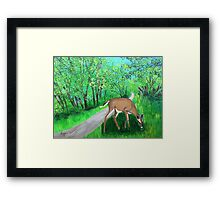 Deer by the old country road Framed Print