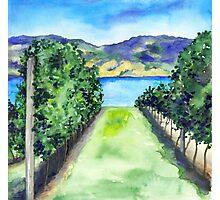 Between the Vines - Landscape Watercolour Photographic Print