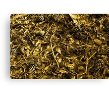 gold rush Canvas Print