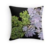Succulants 1 Throw Pillow