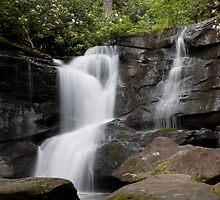 Cedar Rock Falls by Forrest Tainio