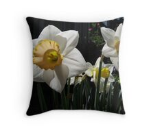 Yellow & white trumpet daffodils Throw Pillow