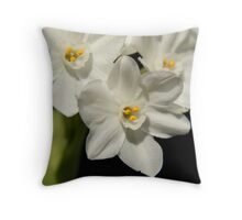 White & yellow paperwhites Throw Pillow