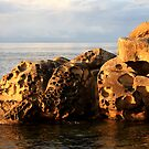 sandstone shore in gold by TerrillWelch