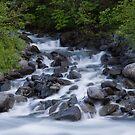 Flow - Wittier Alaska by Melissa Seaback
