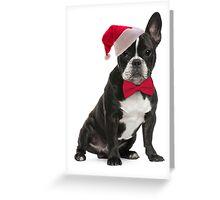 Santa Frenchie Greeting Card