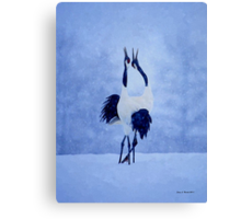 Red Crowned Crane Canvas Print