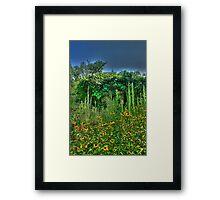 A Secret Garden Framed Print
