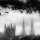 Spires by Lynne Haselden