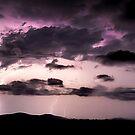 Purple Light by Rodney Trenchard
