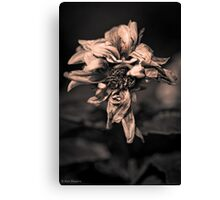 Having one of those nights Canvas Print
