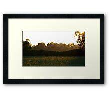 Summer Scene Framed Print