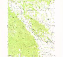 USGS Topo Map Oregon Gales Creek 279980 1979 24000 by wetdryvac