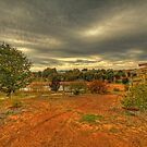 Down at the Farm, Bridgetown, Western Australia by Elaine Teague