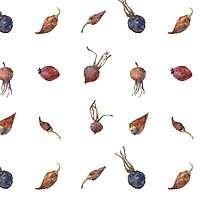 Sun-dried rose hip and pepper by Lunta
