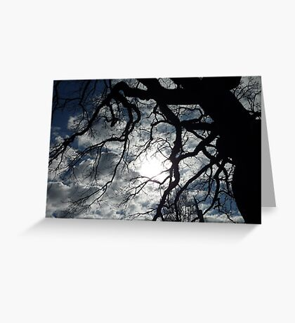 Spooky  Willow Greeting Card