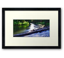 Afternoon Rush Hour Framed Print