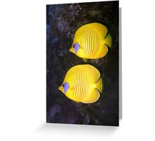 Pair of Yellow Butterflyfish Greeting Card