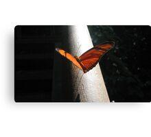 orange wings - iguazu falls Canvas Print