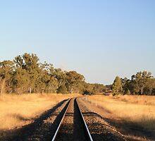 Sunny Tracks by NinaJoan