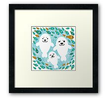 White cute fur seal and fish in water Framed Print