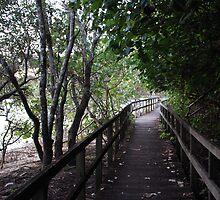 Tweed Riverside Boardwalk by Graham Mewburn