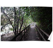 Tweed Riverside Boardwalk Poster
