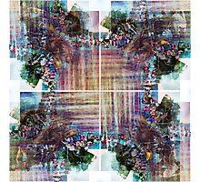 P1420147-P1420150 _GIMP Photographic Print