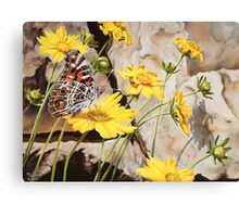 """Painted Lady"" - The American Painted Lady Butterfly Canvas Print"