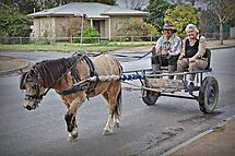 Country Bumpkins by JaninesWorld