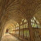 Gloucester Cathedral Cloisters II by Chris Tarling